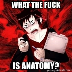 Angry Artist - what the fuck is anatomy?