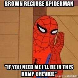 "Psst spiderman - Brown Recluse spiderman ""If you need me i'll be in this damp crevice"""