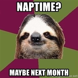 Just-Lazy-Sloth - naptime? maybe next month
