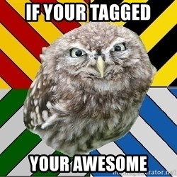 JEALOUS POTTEROMAN - if your tagged your awesome