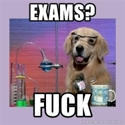Dog Scientist - Exams? fuck