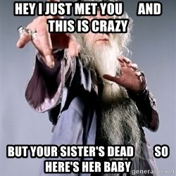 Bitchin Dumbledore - Hey I just met you      And this is crazy But your sister's dead         so here's her baby