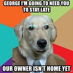 Business Dog - George I'm going to need you to stay late our owner isn't home yet