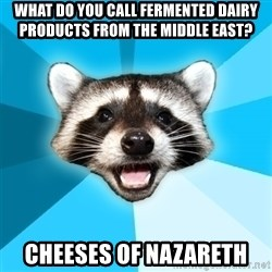 Lame Pun Coon - What do you call fermented dairy products from the middle east? cheeses of nazareth