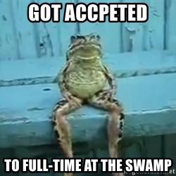 sittingfrog - Got accpeted  To full-time at the swamp