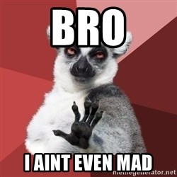 Chill Out Lemur - BRO I AINT EVEN MAD