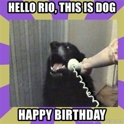 Yes, this is dog! - Hello rio, this is dog happy birthday