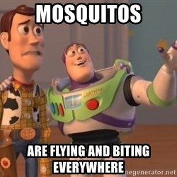 Tseverywhere - Mosquitos are flying and biting everywhere