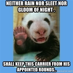 Baby Panda - Neither rain nor sleet nor gloom of night . SHALL KEEP THIS CARRIER FROM HIS  APPOINTED ROUNDS..