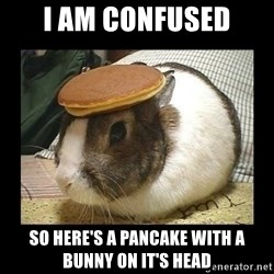 Bunny with Pancake on Head - i am confused so here's a pancake with a bunny on it's head
