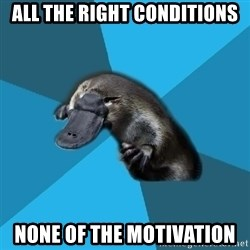 Podfic Platypus - all the right conditions none of the motivation