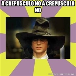 Harry Potter Sorting Hat - a crepusculo no a crepusculo no