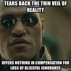 Scumbag Morpheus - tears back the thin veil of reality offers nothing in compensation for loss of blissful ignorance