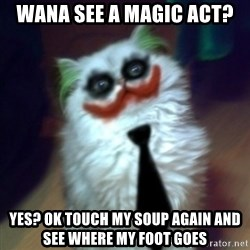 JokerCat - wana see a magic act? yes? ok touch my soup again and see where my foot goes