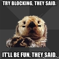 Roller Derby Otter - Try blocking, they said. It'll be fun, they said.