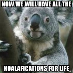 koalafications - Now we will have all the  koalafications FOR LIFE