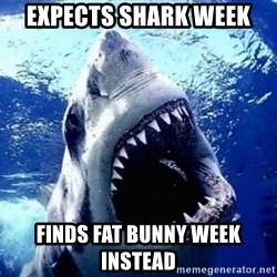 Cinematically Snob Shark - Expects shark week finds fat bunny week instead