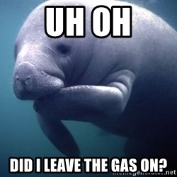fat positive manatee - uh oh did i leave the gas on?