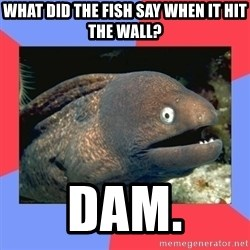 Bad Joke Eels - What did the fish say when it hit the wall? dam.