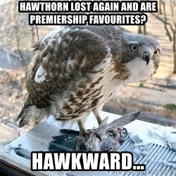 Hawkward - HAWTHORN LOST AGAIN AND ARE PREMIERSHIP FAVOURITES? HAWKWARD...