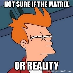 Futurama Fry - Not sure if the matrix or reality