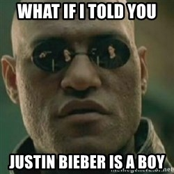 Nikko Morpheus - What if i told you justin bieber is a boy