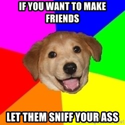 Advice Dog - if you want to make friends let them sniff your ass