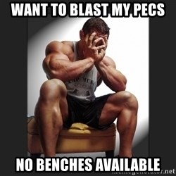 gym problems - want to blast my pecs no benches available