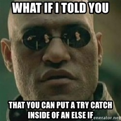 Nikko Morpheus - What if I told you That you can put a try catch inside of an else if