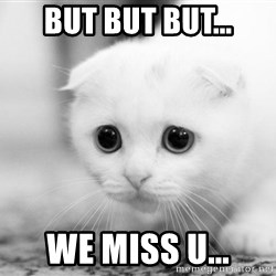 Sadcat - BUT but but... we miss u...