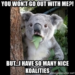 Koala can't believe it - you won't go out with me?! but...i have so many nice koalities