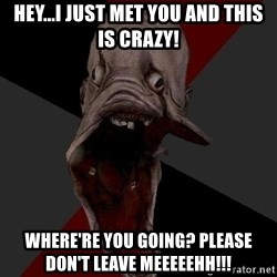 Amnesiaralph - Hey...I just met you and this is Crazy! Where're you going? Please don't leave meeeeehh!!!