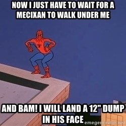 """Spiderman12345 - now i just have to wait for a mecixan to walk under me and bam! i will land a 12"""" dump in his face"""