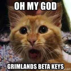 Crazy cat - OH MY GOD Grimlands beta Keys