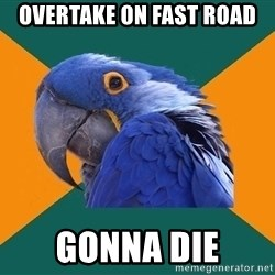 Paranoid Parrot - overtake on fast road gonna die