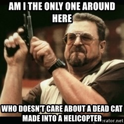 am i the only one around here - am i the only one around here who doesn't care about a dead cat made into a helicopter