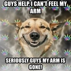Stoner Dog - Guys help, i can't feel my arm seriously guys my arm is gone!