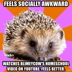 Homeschooled Hedgehog - FEELS SOCIALLY AWKWARD WATCHES BLIMEYCOW'S HOMESCHOOL VIDEO ON YOUTUBE. FEELS BETTER.