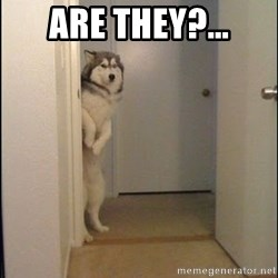 Lucho - are they?...