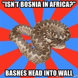 """Eastern European Enthusiast Snake - """"Isn't bosnia in africa?"""" bashes head into wall"""
