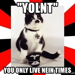 "Hitler Cat - ""yolnt"" You only live nein times"