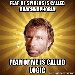 Chuck Norris Advice - fear of spiders is called arachnophobia fear of me is called logic