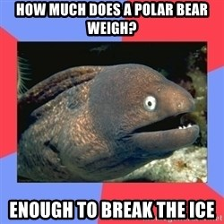 Bad Joke Eels - How much does a polar bear weigh? enough to break the ice