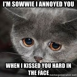 Sadcat - i'm sowwie i annoyed you when i kissed you hard in the face
