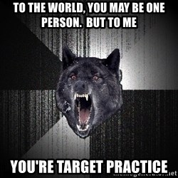 Insanity Wolf - to the world, you may be one person.  but to me you're target practice
