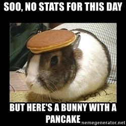 Bunny with Pancake on Head - Soo, no stats for this day but here's a bunny with a pancake