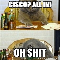 Poker Cat - cisco? all in! oh shit