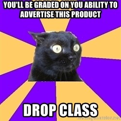 Anxiety Cat - you'll be graded on you ability to advertise this product drop class