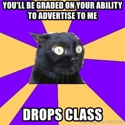 Anxiety Cat - you'll be graded on your ability to advertise to me drops class