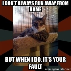 The Most Interesting Cat in the World - I don't always run away from home but when I do, it's your fault